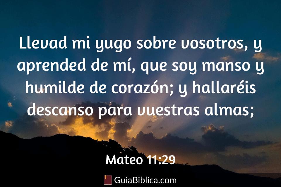Mateo 11_29